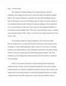 Ibs Critical Reflection Essay